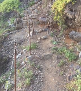Camino Teneriffa 2015