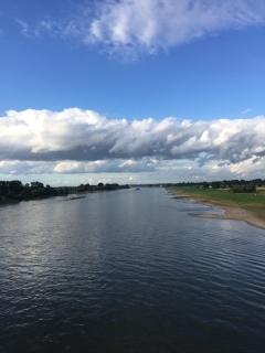 Rhein im Juli 2017