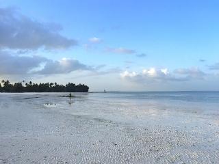 Strandlaufen Sansibar
