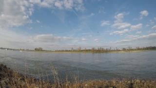 Rhein im März 2018