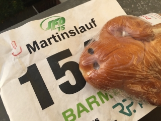 Martinslauf 2017